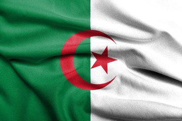 3D Flag of Algeria satin