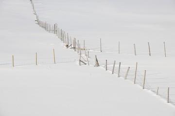 Fenced fields in Ytresand, Moskensoy, Loftofen, Norway