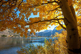 Fototapety Autumn lake