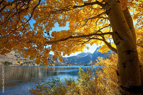 Fototapeta Autumn lake