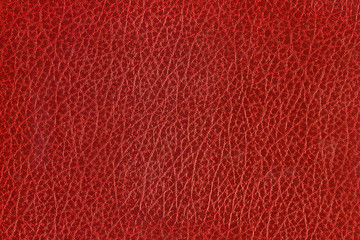 Red Texture #01