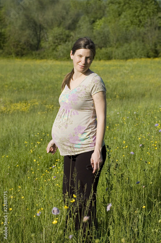 Pregnant woman on the meadow