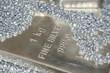 Silber - 22883129
