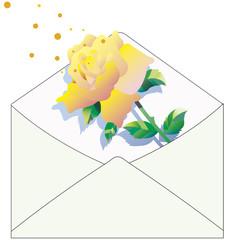 感謝のバラの手紙 02