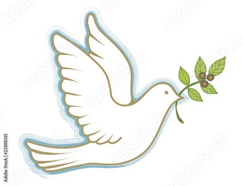 Peace Dove - 22888361