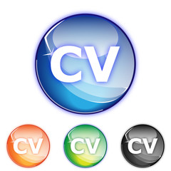 Picto Curriculum vitae - Icon CV - collection color