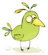 Green crazy bird
