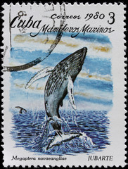 ost stamp shows sea mammal humpback whale