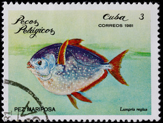 post stamp shows pelagian fish