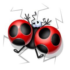 ladybug crushed