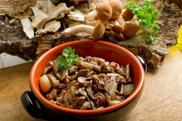 mushroom sauted on bowl - funghi trifolati