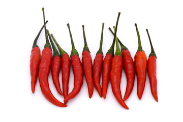 line of birds eye chillies