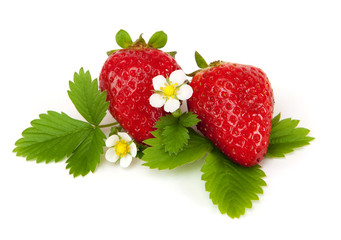 strawberry with leaf and blossom