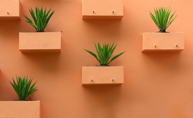 Orange background with desert plants