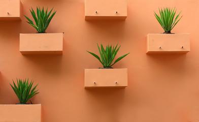 Orange background with desert plants