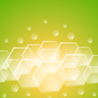 Yellow and green background with hexagon shapes.