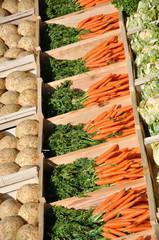 Céleris, carottes et choux-fleurs