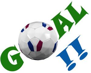 Goal pour la France