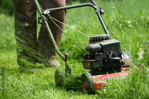 Mowing - 22998527