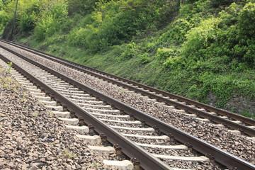 Vía del tren y vegetación