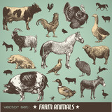 vector set: farm animals - various retro-style illustrations poster