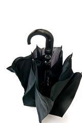 One black umbrella