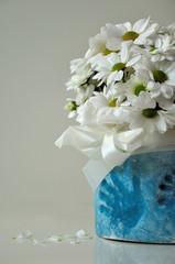 białe margaretki w niebieskiej donicy