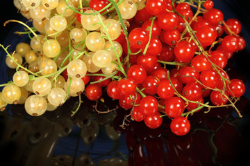 Sweet berries red currant and white currant