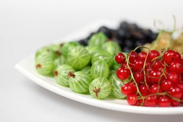Sweet berries red currant and black-currant and gooseberries
