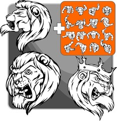 lion. Mascot template.