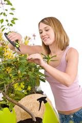 Gardening - Happy woman cutting Rhododendron flower