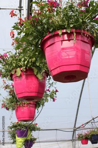 pot de fleurs en suspension de bat104 photo libre de droits 23020158 sur. Black Bedroom Furniture Sets. Home Design Ideas