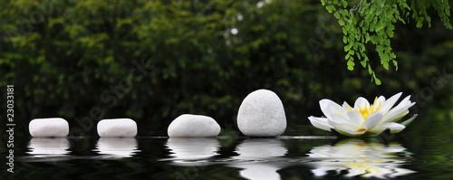 Steinreihe mit Seerose - 23033181