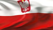 Creased Polish satin flag in wind with seams and wrinkle