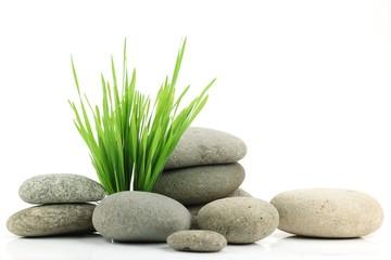 Zen stone with fresh grass