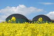 Biogasanlage - 23071507