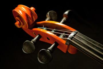 Kopf eines Violoncelli