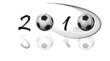2010 - coupe du monde de football