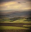 Vintage Countryside Landscape