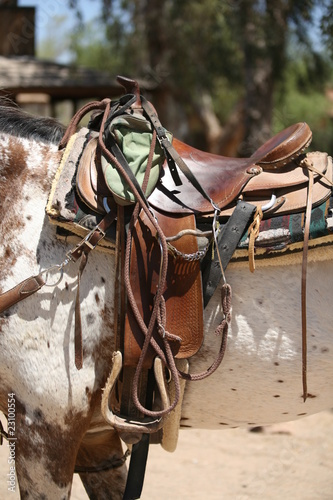 Western saddle with bridle