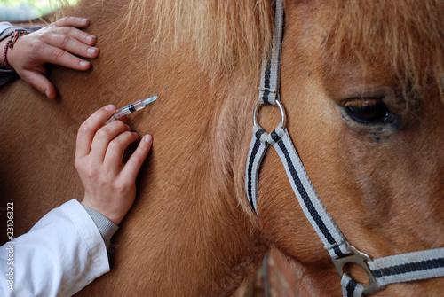 Impfling