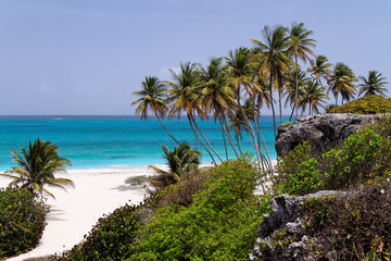 Tropical caribbean beach / Bottom Bay / Barbados