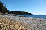 Sandy Beach Landscape In Rural Newfoundland poster