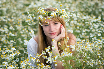 beautiful girl in a camomile field