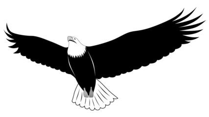 Eagle, tattoo