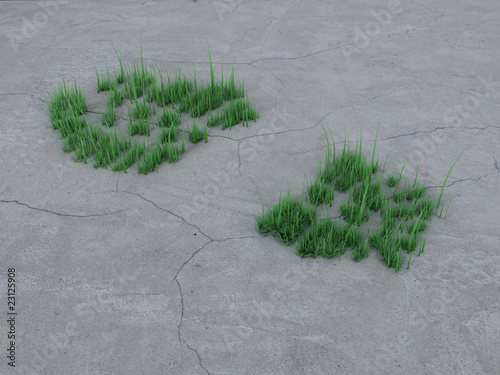 Footprint on stone and grass. Ecology concept