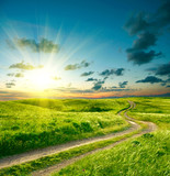 Fototapety Summer landscape with green grass, road and dramatic sky