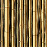 Fototapety Seamless bamboo forest. Vector.