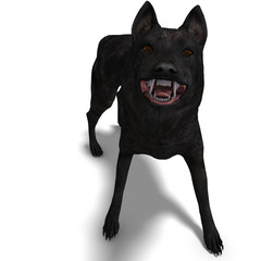Black Wolf. 3D rendering with clipping path and shadow over whit