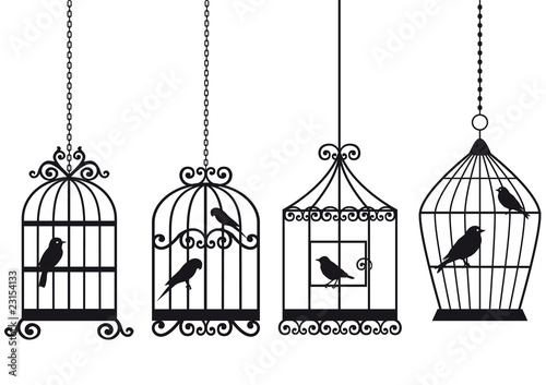 Papiers peints Oiseaux en cage vintage birdcages with birds